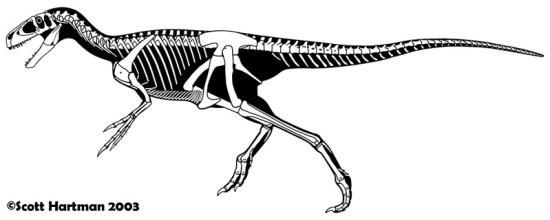 Eotyrannus