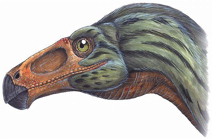 Erlikosaurus