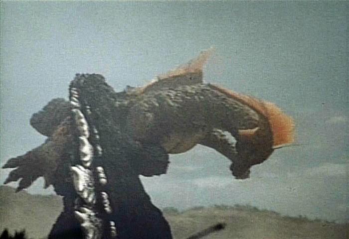 Titanosaurus Pictures The Dinosaur Database