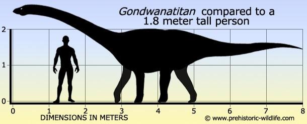 Gondwanatitan
