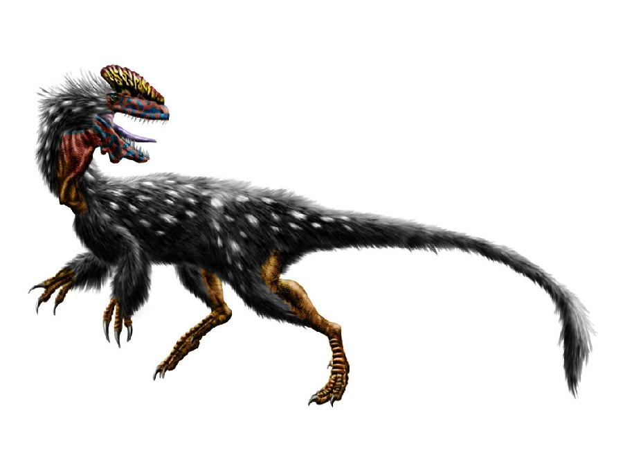 guanlong_wucaii_by_durbed-d4we433_bf67.jpg
