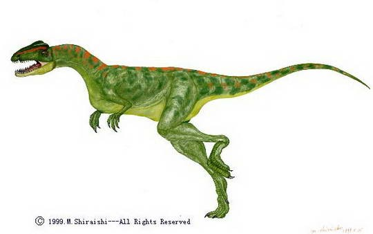 Halticosaurus