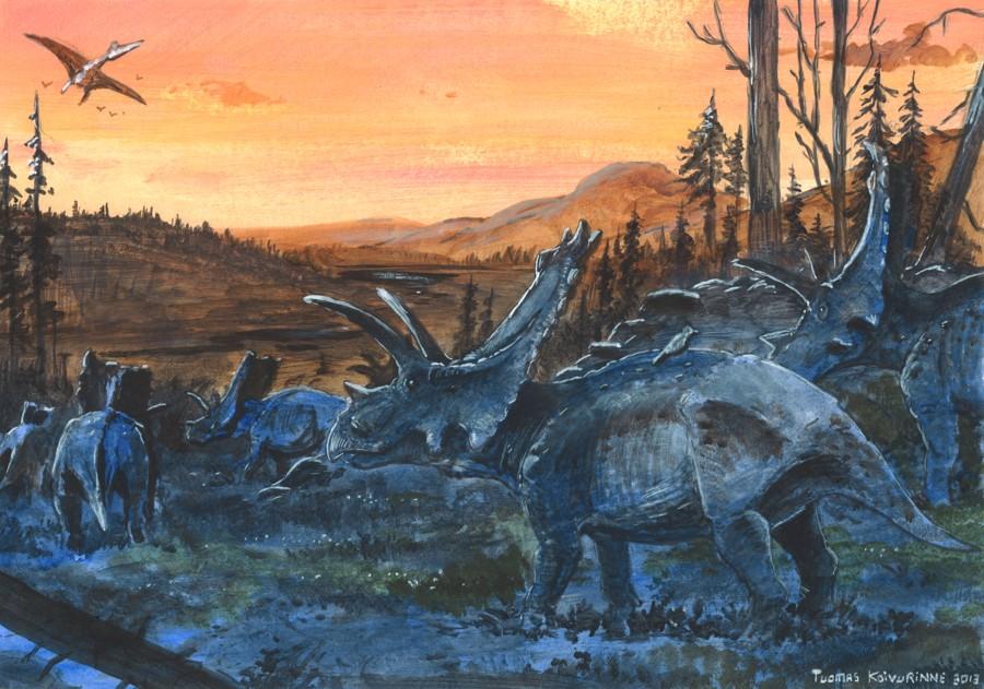 Bravoceratops