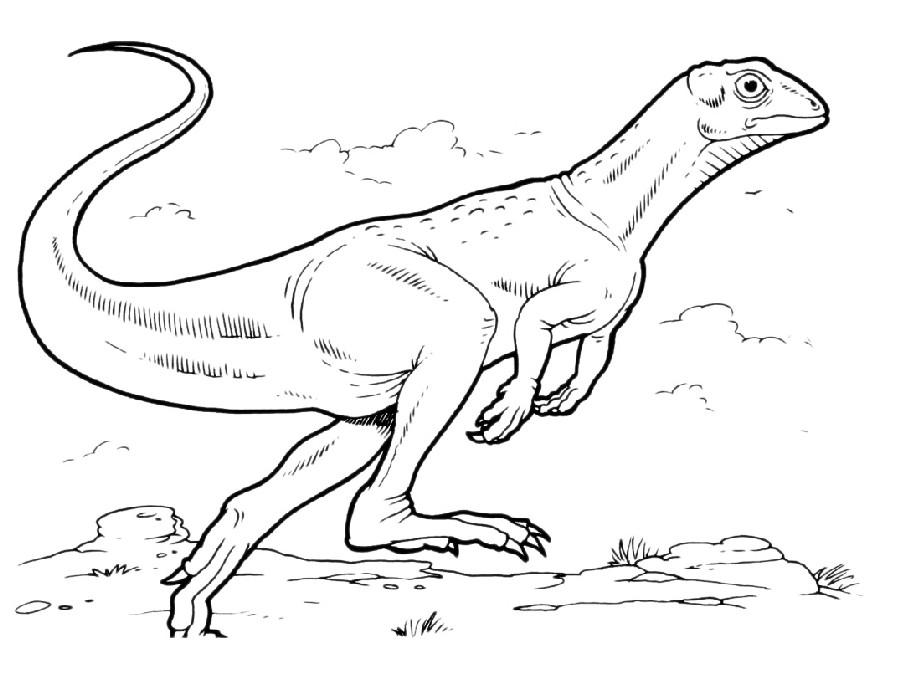 Fulgurotherium