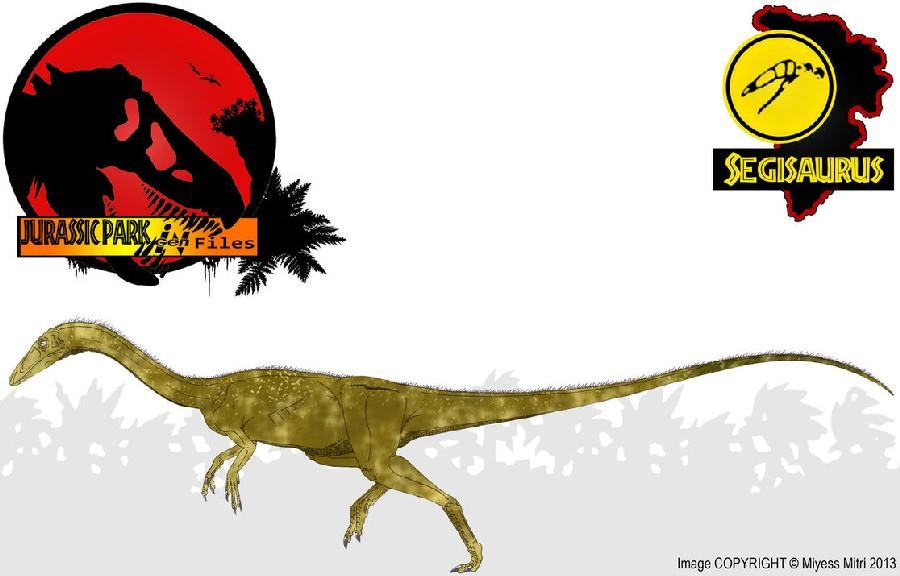 Segisaurus