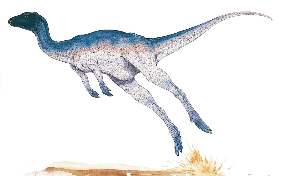 Zephyrosaurus Pictures & Facts - The Dinosaur Database