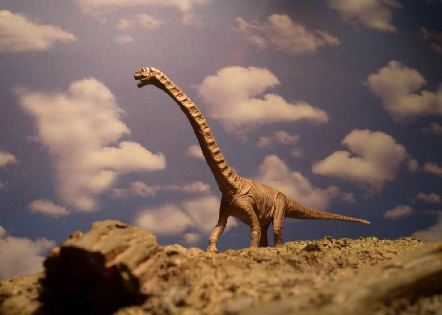 Chuanjiesaurus