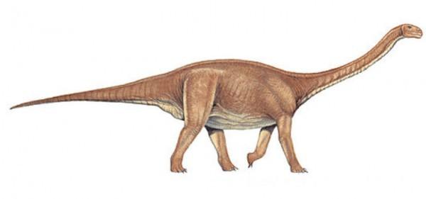 Kunmingosaurus