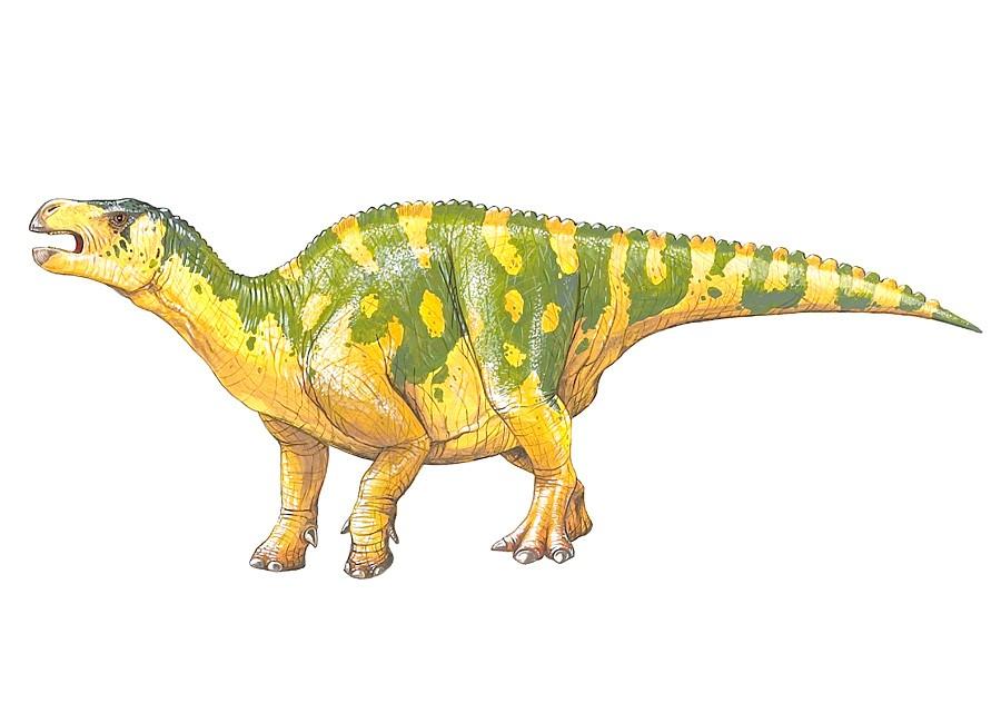 Lanzhousaurus