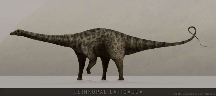 Leinkupal Pictures & Facts - The Dinosaur Database