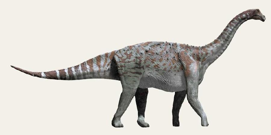 Lirainosaurus