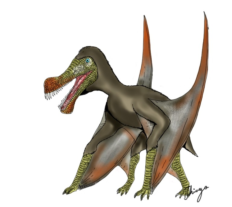 Maaradactylus