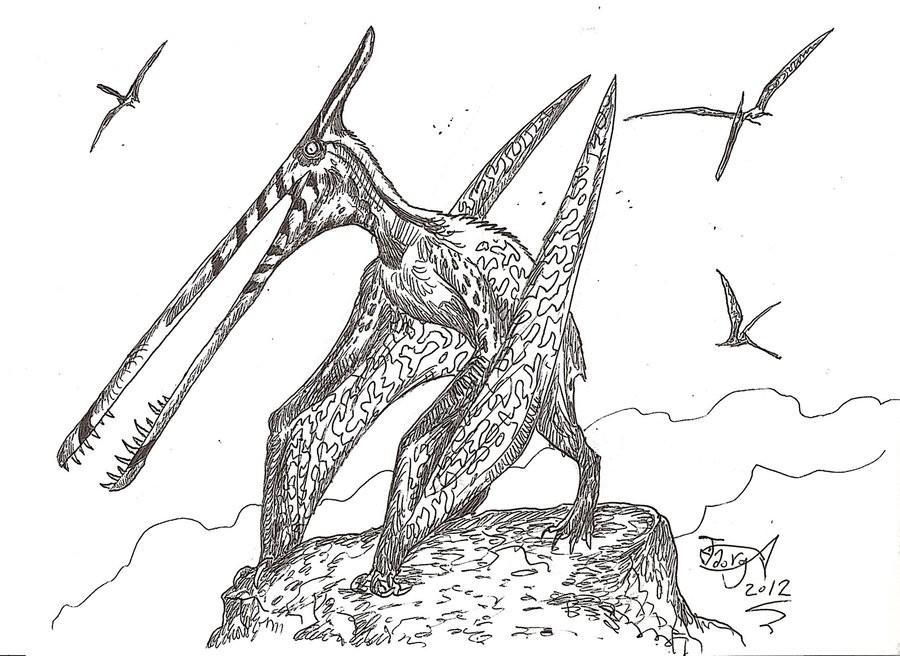 Moganopterus