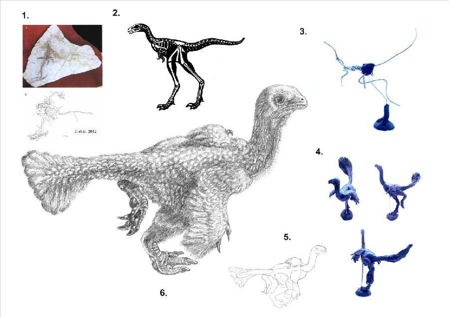 Ningyuansaurus