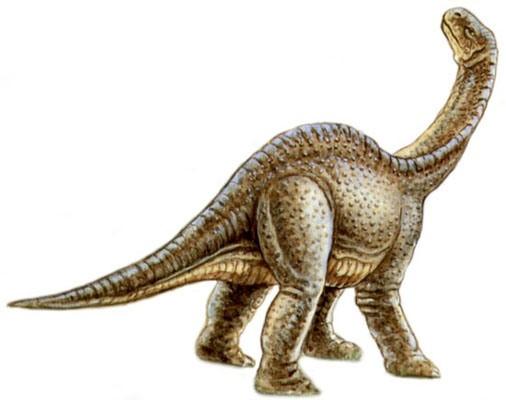 Ohmdenosaurus
