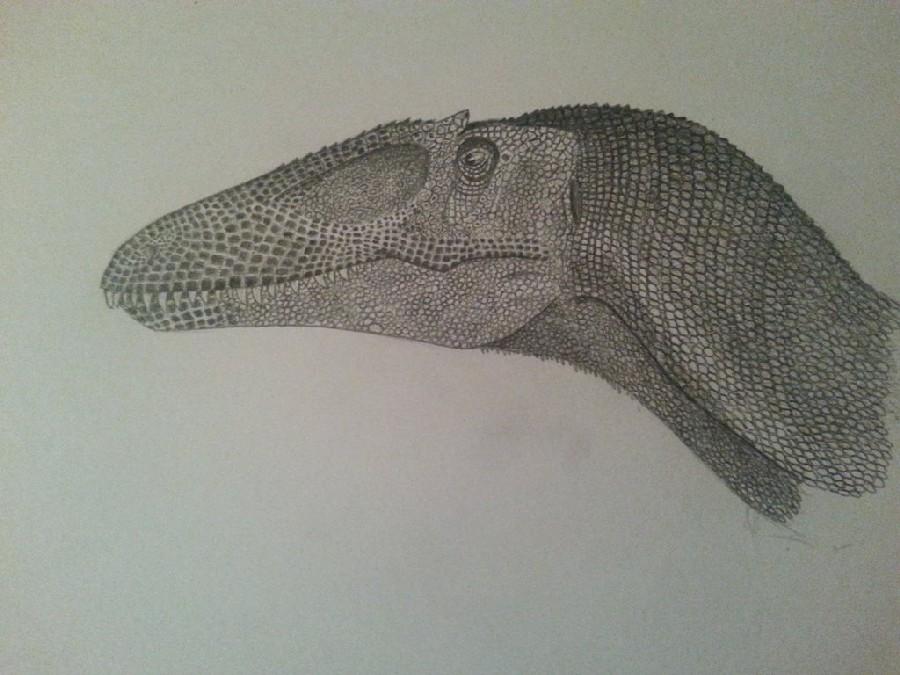 Poekilopleuron