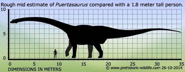 Puertasaurus