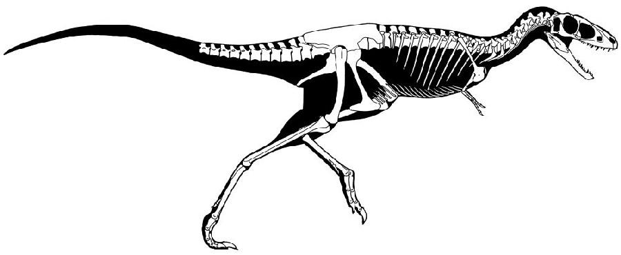 один экономичных картинки динозавров рапторекс сезон июль