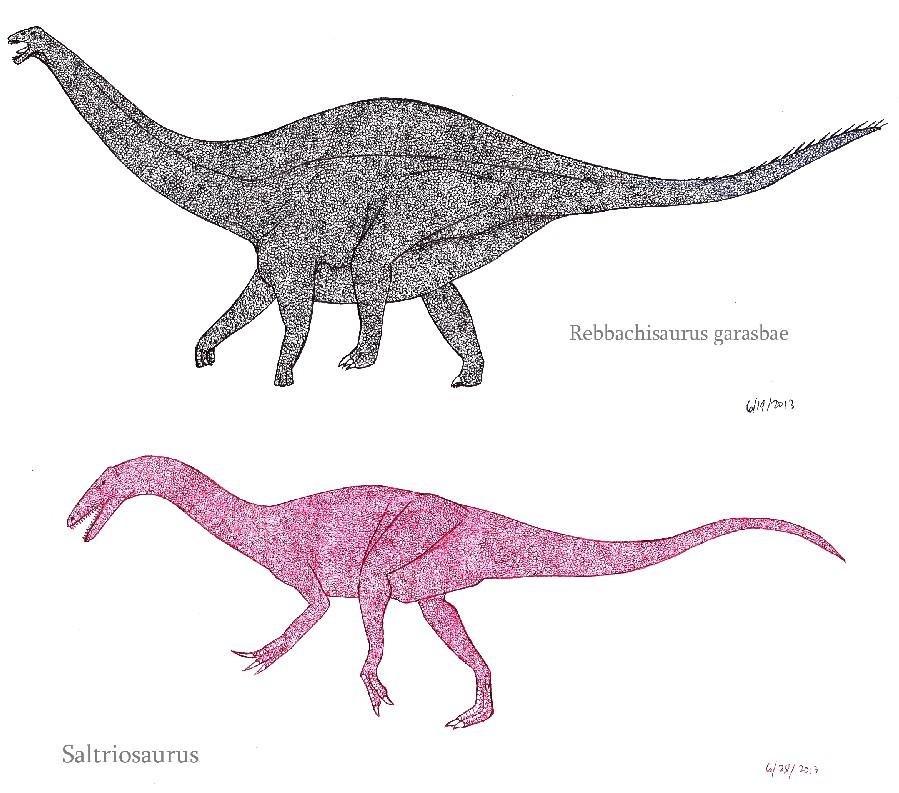 Saltriosaurus