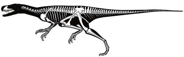Sanjuansaurus