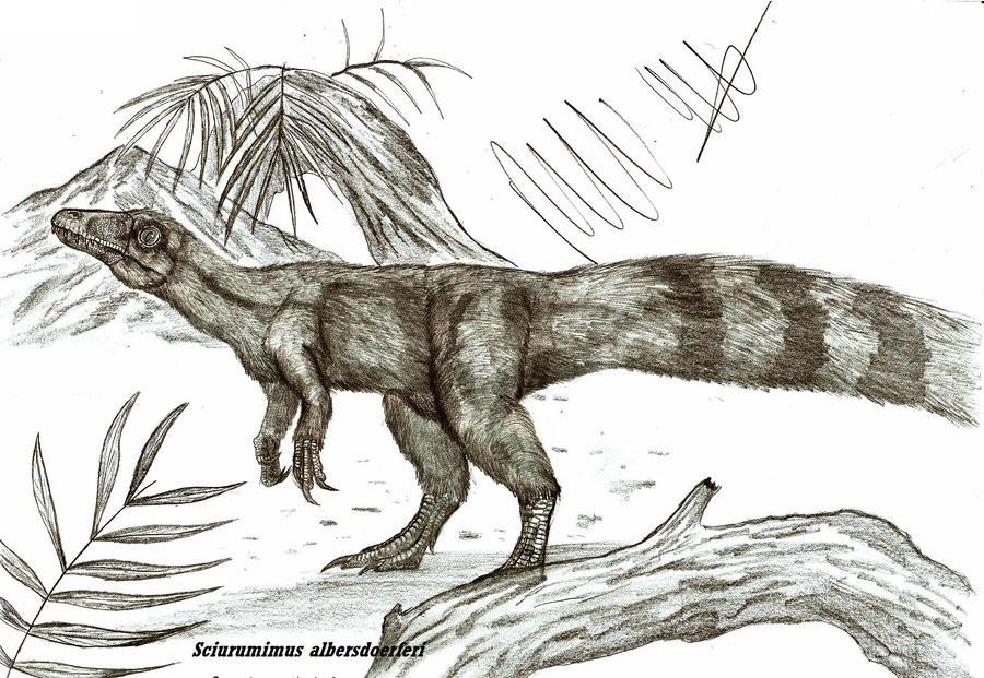 Sciurumimus
