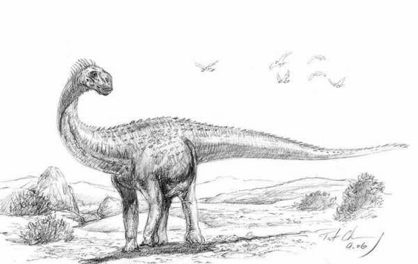 Sonidosaurus
