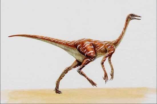 Struthiomimus