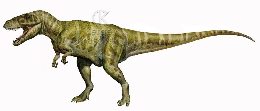 Torvosaurus Related Keywords & Suggestions - Torvosaurus Long Tail ... | 900 x 386 jpeg 46kB