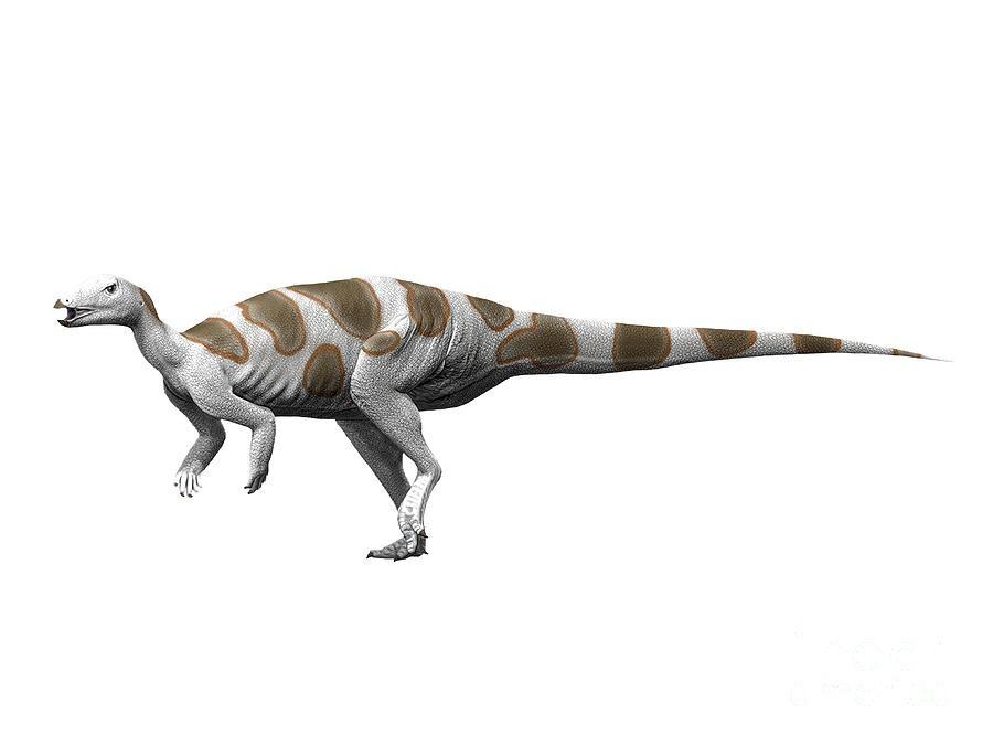 Trinisaura