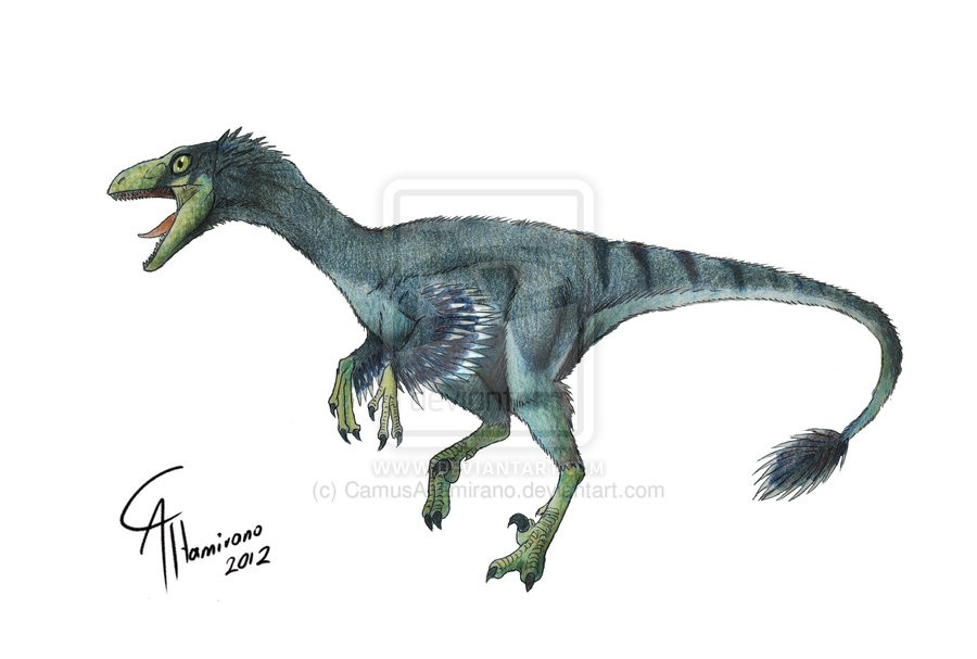 Troodon Pictures on Small J