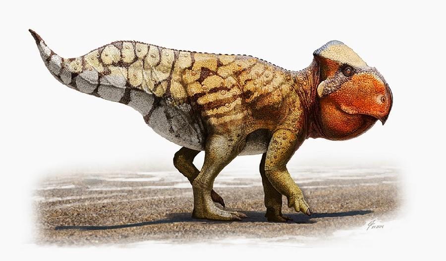 Udanoceratops