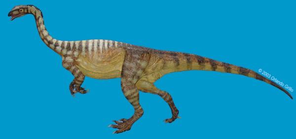 Unaysaurus