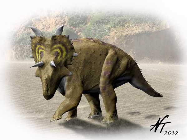 Xenoceratops Pictures ...
