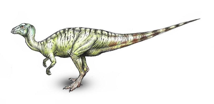 Yueosaurus
