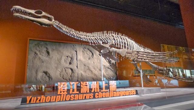Yuzhoupliosaurus